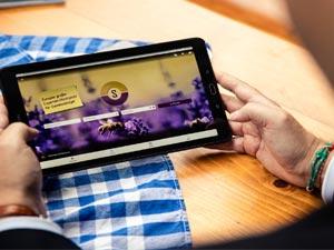 Stiftungen und die digitale Welt